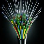 Optic fiber cable — Stock Photo #8298891