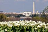 Washington DC Skyline with Lincoln Memorial, Washington Monument — Stock Photo
