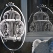 Antique bird cage in the sun — Stock Photo