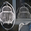 Antique bird cage in the sun - Stock Photo