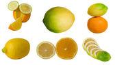 Collage of citrus — Stock Photo