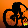 Stock Photo: Mountain biker silhouette