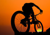 Mountain biker silhouette — Stock Photo