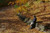 Przerwa ranek - jesienne liście — Zdjęcie stockowe