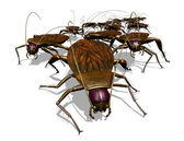 Cockroach Invasion - Bug's View — Stock Photo