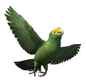 Double Yellow-Headed Amazon Parrot — Stock Photo