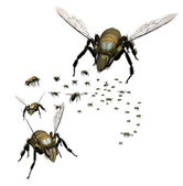 Swarm of Bees — Stock Photo