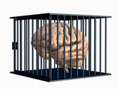Brain in a Cage — Stock Photo