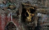 Descoberta macabra — Fotografia Stock