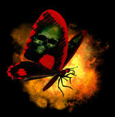 Demon Butterfly — Stock Photo