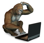 Perplexed Gorilla with Laptop — Stock Photo