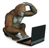Perplexed Gorilla with Laptop — Stock Photo