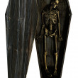 Decaying Skeleton in Coffin — Stock Photo
