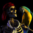 Stock Photo: Skeleton Pirate with Parrot