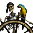Stock Photo: Skeleton Pirate 2