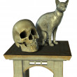 Still Life with Egyptian Cat Statue and Human Skull — Stock Photo