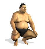 相撲取り 2 — ストック写真