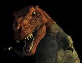 Tyrannosaurus Rex Portrait — Stock Photo