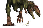 Dinosaur Size Comparison - Huge to Tiny — Stock Photo