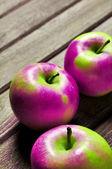 遺伝子組み換え遺伝子組み換え作物 — ストック写真