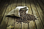 Coffee-beans — Stock Photo