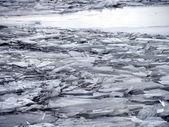 壊れた氷川 — ストック写真