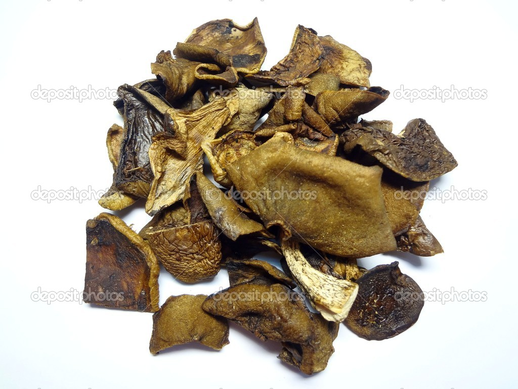Mushrooms are dried  on a white background — Stock Photo #9676101