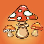 Mushroom in Organce Backgound — Stock Vector