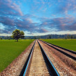 Royalty-Free Stock Photo: Railroad in field