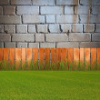 Green grassin garden — Stock Photo
