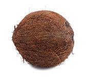Celý kokos — Stock fotografie