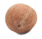 Coco intero senza un guscio — Foto Stock