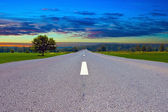 Road in sunset — Stock fotografie
