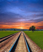 Railway in field — Stock Photo