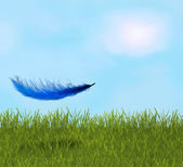 Pluma en el campo — Foto de Stock