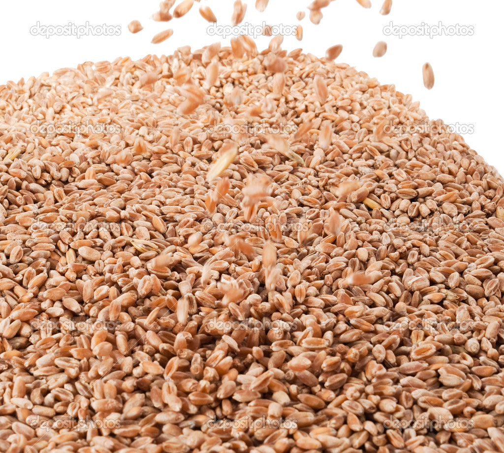Flyaing wheat for background — Stock Photo #8223785