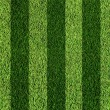 Football grass — Foto Stock #8232627