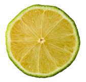Fatia de limão — Foto Stock
