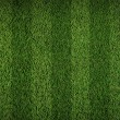 Football grass field — 图库照片