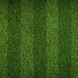 Football grass field — Stock fotografie