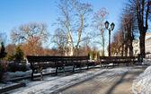 Bench in winter Riga park — Stock Photo