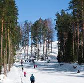 Mountain ski resort — Stockfoto
