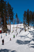 Horské skiiing — Stock fotografie