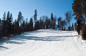 Skiing mountain — Stockfoto