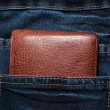Purse in the pocket — Stock Photo #8780873