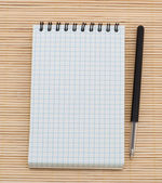 Empty notebook and pen — Foto de Stock