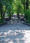 Stone steps in park — Stock Photo