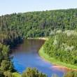 Gauja river — Stock Photo