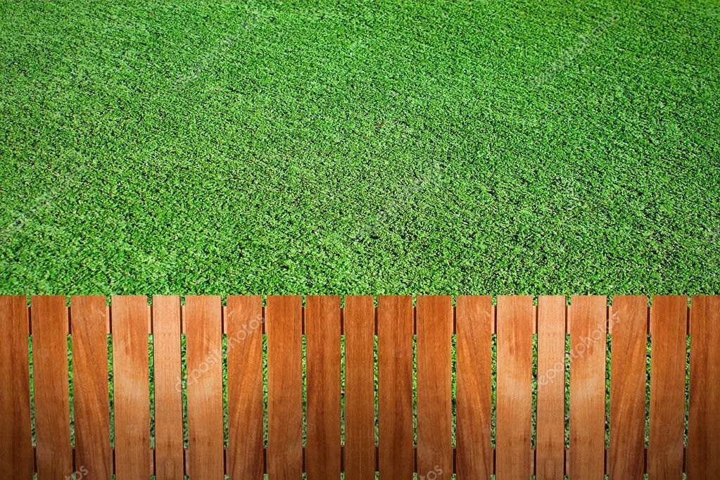 Fence near the garden grass  Stock Photo #8934573