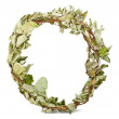 Dry wreath — Stock Photo #9025808